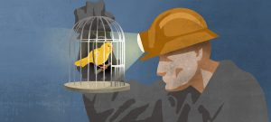 The Canary in the Coalmine